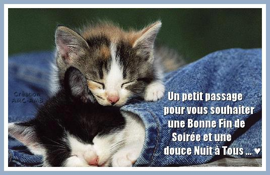 Dimanche 6 Octobre - fete des Grands Peres - Page 2 295468_400037110083003_1924792183_n