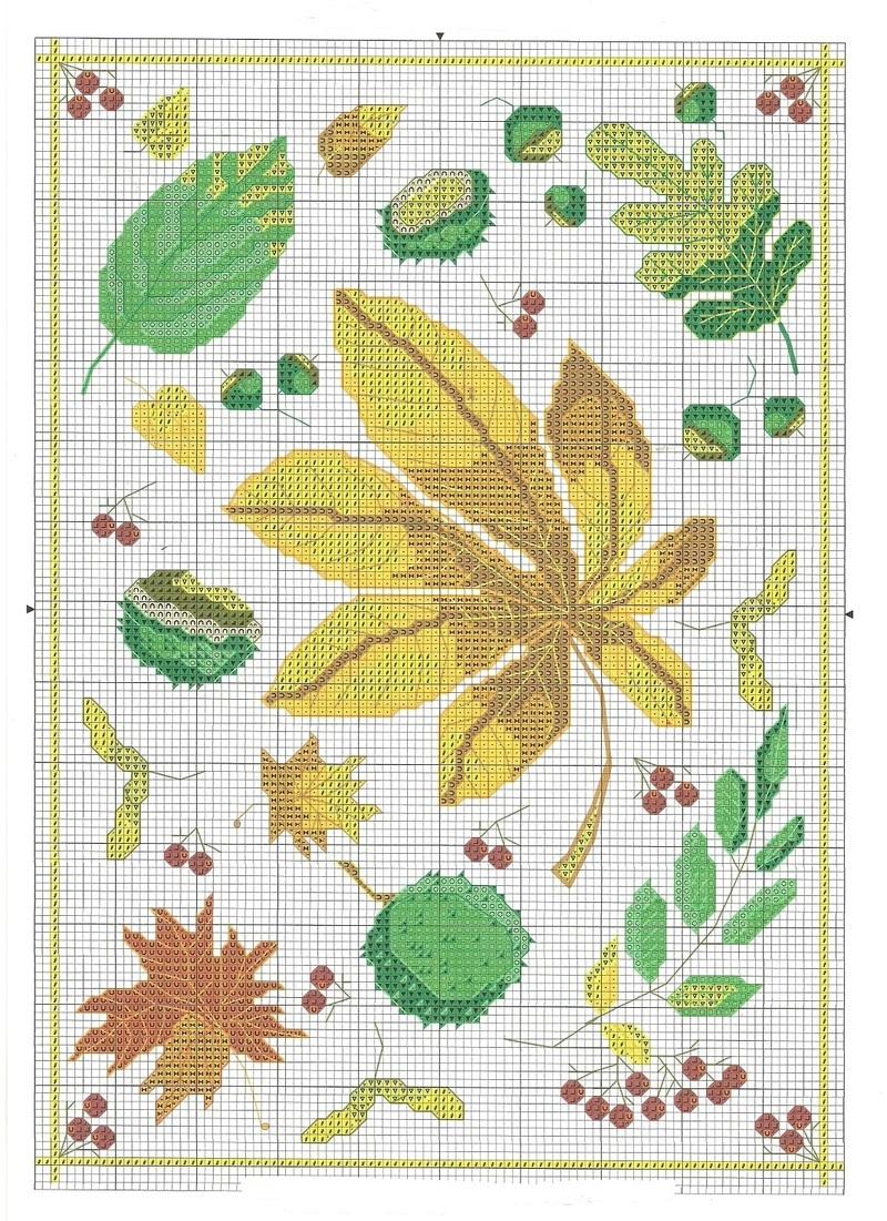 Feuilles-automne.jpg