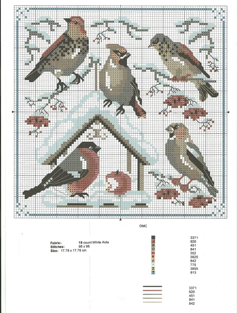 Les-oiseaux_1.jpg