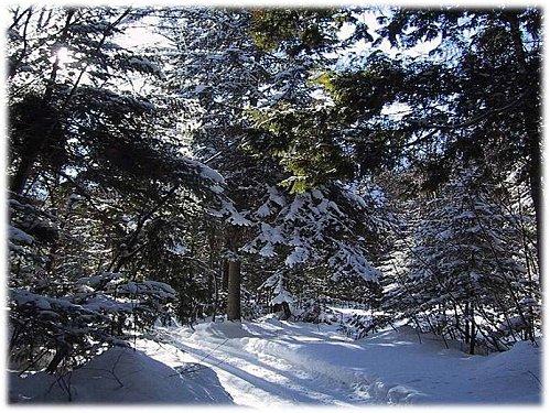 paysage-de-neige-encadre.jpg