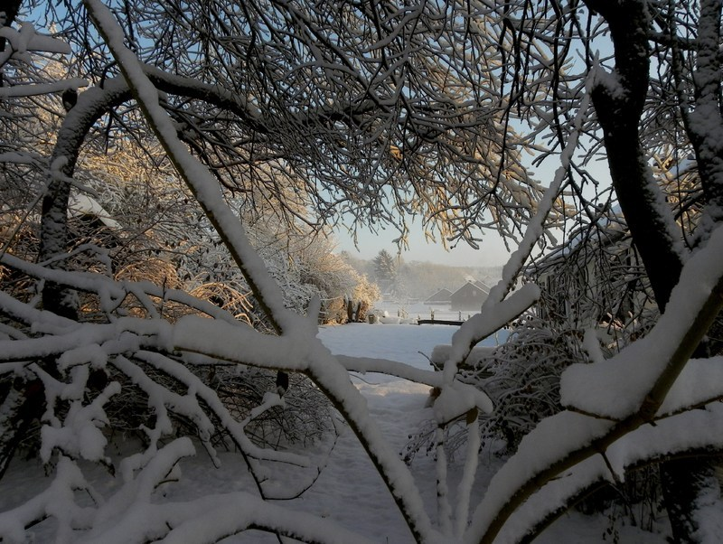 paysage-enneige_74160.jpg